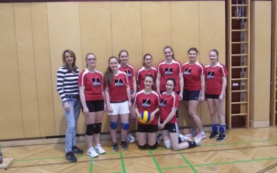 Volleyball Bezirksmeisterschaft