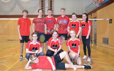 Badminton Landesmeisterschaft