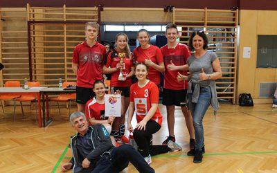 3AHW organisiert schulinternes Volleyballturnier